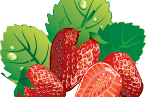 Strawberries_Clipart